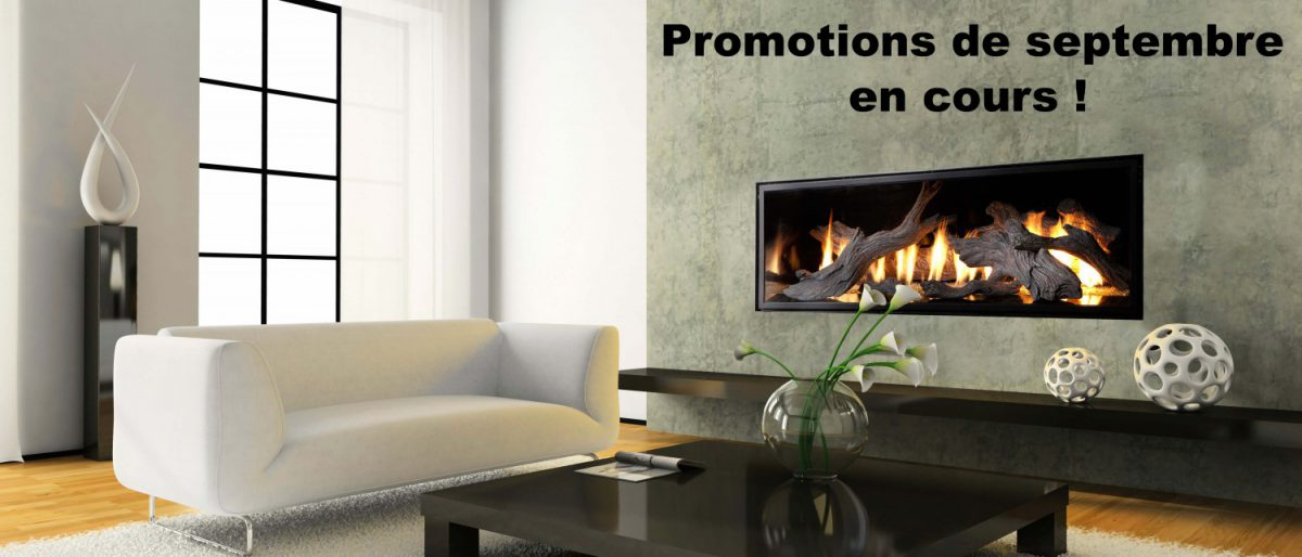 Permalien vers:Promotions